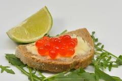 Свежий Salmon сырцовый сандвич косуль Стоковая Фотография RF
