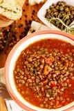 свежий stew чечевицы Стоковое Изображение