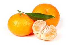 свежий tangerine листьев Стоковое Изображение RF
