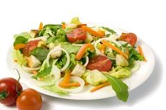 свежим изолированный садом салат плиты стоковые изображения