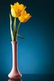 3 свежих желтых тюльпана в фиолетовой вазе Стоковое Изображение RF