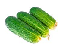 3 свежих зеленых огурца изолированного на белой предпосылке Стоковая Фотография RF