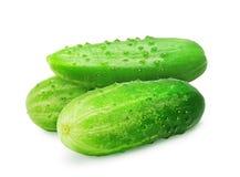 3 свежих зеленых зрелых огурца Стоковая Фотография RF