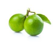 2 свежих зеленых известки на белой предпосылке Стоковые Изображения
