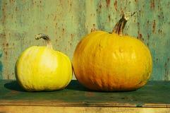 2 свежих зрелых желтых тыквы на деревянной поверхности Стоковое Изображение RF