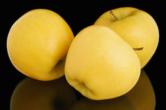 3 свежих зрелых желтых яблока Стоковое фото RF