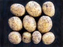 10 свежих картошек в строках Стоковые Фото