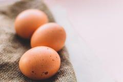 3 свежих коричневых яичка Стоковые Изображения