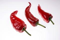 3 свежих красных изолированного болгарского перца Стоковое Фото