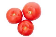 3 свежих томата изолированного над белой предпосылкой Стоковая Фотография RF