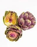 3 свежих фиолетовых артишока, на белизне Стоковое Фото