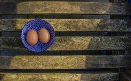 2 свежих яичка фермы Стоковое Изображение