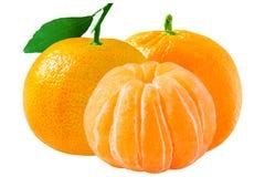 3 свежих tangerines изолированного на белой предпосылке с clippin Стоковое Изображение RF