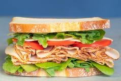 Свежо сделал гастроном ввести сэндвич в моду с салатом, несколько различных видов овощей, томатов, сыра, мяс подобных ветчине, стоковое изображение
