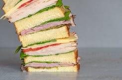 Свежо сделал гастроном ввести сэндвич в моду с салатом, несколько различных видов овощей, томатов, сыра, мяс подобных ветчине, стоковые изображения rf