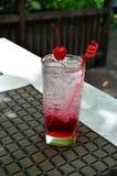 Сверкная вода с содой поленики Стоковые Изображения RF