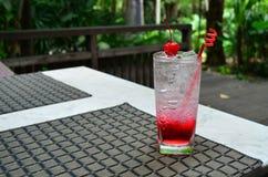 Сверкная вода с содой поленики Стоковые Фото