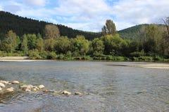 Сверкная гористый поток Стоковые Фото
