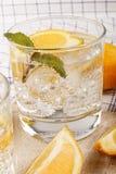 Сверкная минеральная вода с лимоном и льдом Стоковые Фотографии RF