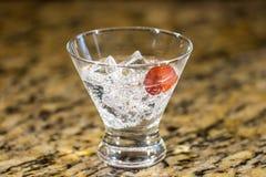 Сверкная напиток на льде с плодоовощ Стоковая Фотография RF