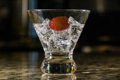 Сверкная напиток на льде с плодоовощ Стоковые Изображения