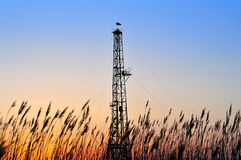 сверля башня Стоковая Фотография
