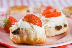 свернутые cream клубники scones Стоковые Фотографии RF