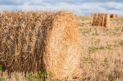 Свернутый пакет сена Стоковое Фото