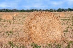 Свернутый пакет сена Стоковые Изображения