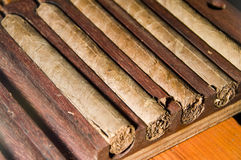 свернутый шкаф свежей руки сигар никарагуанский стоковое изображение rf