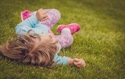 Свертывать вниз на траве Стоковые Изображения