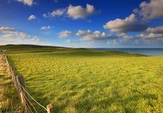 Свертывая ландшафт зеленых холмов Стоковое Изображение