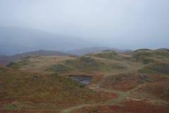 Свертывая вересковая пустошь с небольшим озером Тарном: типичный район северной Британии - английский озера стоковая фотография