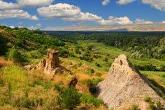 Сверху долина и древесина Стоковое Изображение RF