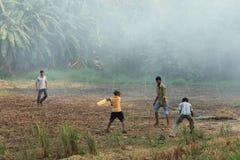 Сверчок игры мальчиков в рисовых полях Стоковые Фото