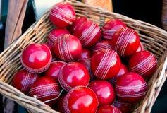 сверчок шариков Стоковая Фотография RF