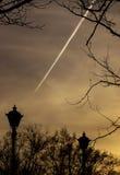 Света в парке Стоковые Фотографии RF