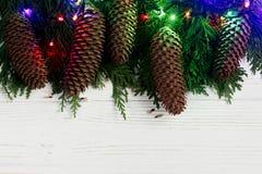 Света гирлянды рождества и конусы сосны на ветвях ели стильно Стоковое фото RF