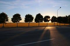 Света захода солнца на дороге Стоковое Изображение RF