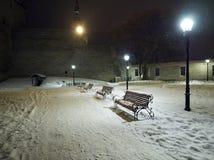 Света зимы стоковые фотографии rf
