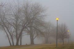 Света и туман устанавливая настроение Стоковые Фото