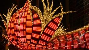 Света казино Лас-Вегас сток-видео