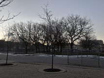 Света неба зимы Стоковое фото RF