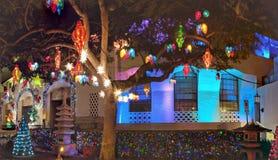 Света рождества висят от дерева перед Гонолулу здоровым Стоковые Изображения RF