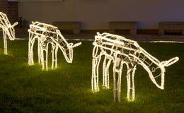 Света рождества северного оленя Стоковые Изображения