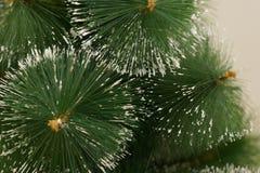 Света рождества вися в дереве Стоковые Изображения RF