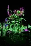 света сада стоковые фото