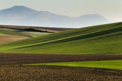 Света Andalucia Стоковые Фото