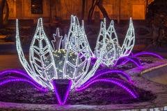 Света lilys воды Стоковая Фотография