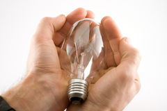 светильники светильника Стоковое фото RF